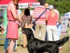2013-08-04-lithuanian-retriever-club-show-w13img_4998