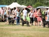 2013-08-04-lithuanian-retriever-club-show-w13img_5198