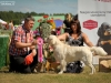 2013-08-04-lithuanian-retriever-club-show-w13img_5391