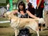 2013-08-04-lithuanian-retriever-club-show-w13img_5448