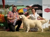 2013-08-04-lithuanian-retriever-club-show-w13img_5463
