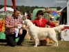 2013-08-04-lithuanian-retriever-club-show-w13img_5498
