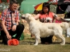 2013-08-04-lithuanian-retriever-club-show-w13img_5561