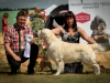 2013-08-04-lithuanian-retriever-club-show-w13img_5596