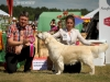 2013-08-04-lithuanian-retriever-club-show-w13img_5651