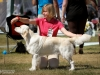 2013-08-04-lithuanian-retriever-club-show-w13img_5813