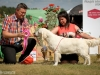 2013-08-04-lithuanian-retriever-club-show-w13img_5826