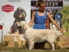 2013-08-04-lithuanian-retriever-club-show-w13img_5845