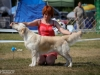 2013-08-04-lithuanian-retriever-club-show-w13img_5878