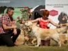 2013-08-04-lithuanian-retriever-club-show-w13img_5914