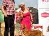 2013-08-04-lithuanian-retriever-club-show-w13img_6037