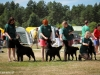2013-08-04-lithuanian-retriever-club-show-w13img_6054