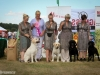 2013-08-04-lithuanian-retriever-club-show-w13img_6141