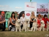 2013-08-04-lithuanian-retriever-club-show-w13img_6158