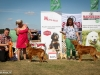 2013-08-04-lithuanian-retriever-club-show-w13img_6314