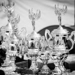 Retriever_Club_Winner_12_Druskininkai_IMG_4014